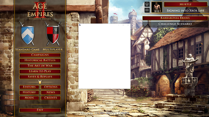 5th login screen blank until close