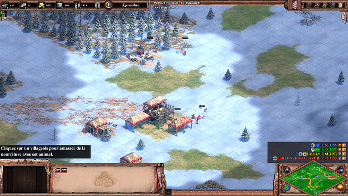 Age of Empires II_ Definitive Edition 30_04_2020 18_13_07